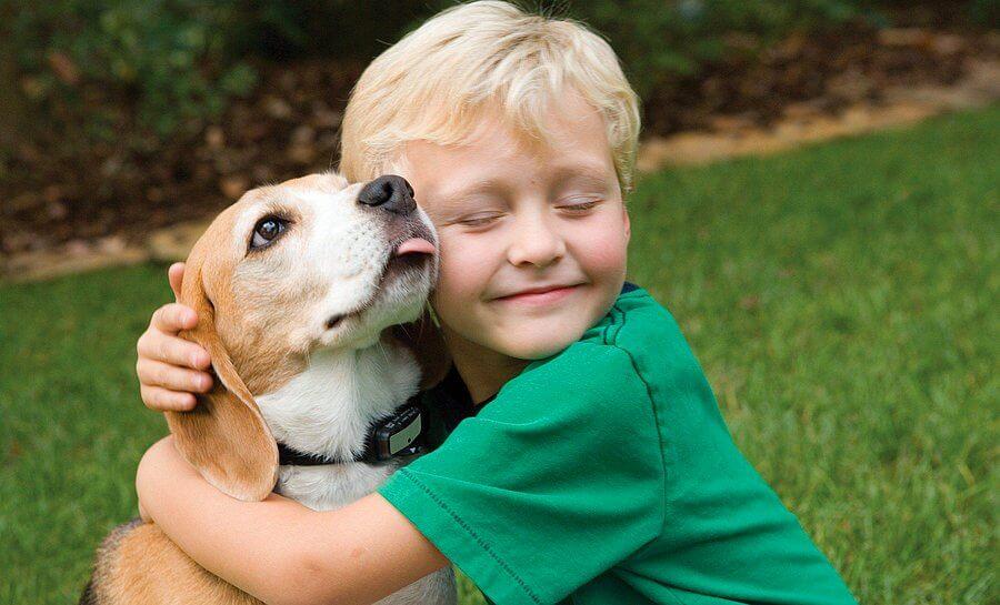 Çocuklar ve Hayvan Sevgisi